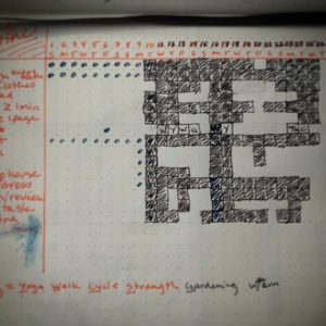 Shannon's morning routine tracking page in her bullet journal